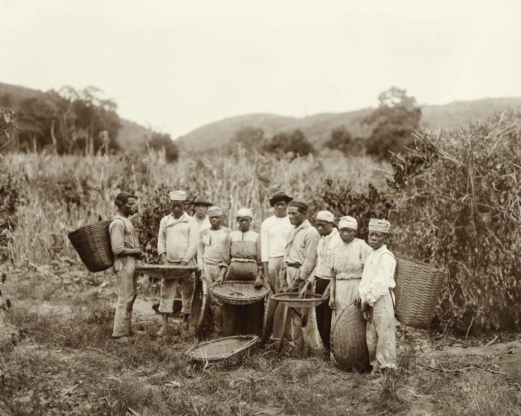 escravidão-consciencianegra-falaze-vaiali